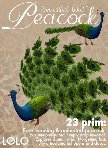 Virtual Animals: Peacocks
