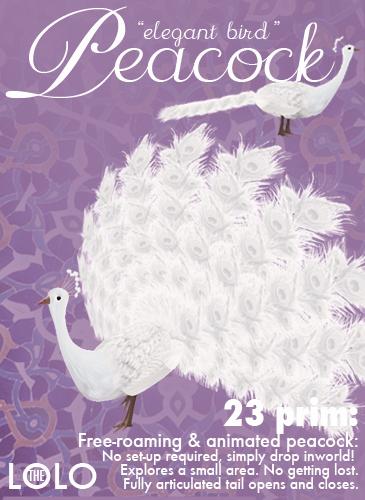 Royal Bird: White Peacock