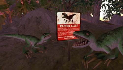 Raptors sighted at The LOLO!