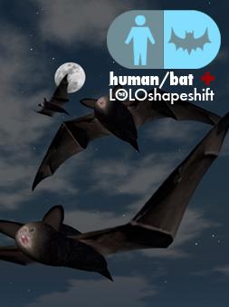 Bat-human