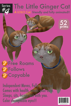 LOLO Ginger Cat - Box Graphic Design
