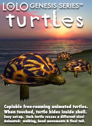 Lolo Turtles