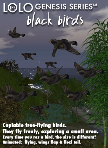 LOLO GENESIS: black birds