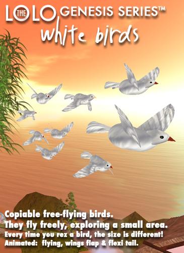 LOLO GENESIS: white birds
