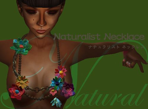 Naturalist-necklace