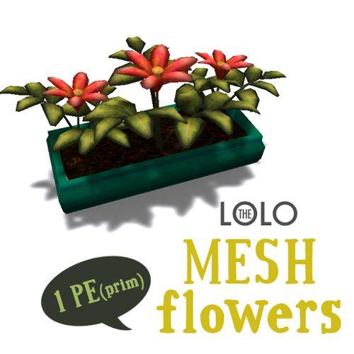 Lolo-meshflowers